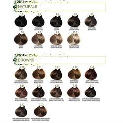 B.Life Saç Boyası 100 Ml - Thumbnail
